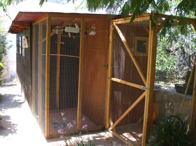 Aviary Complete 012