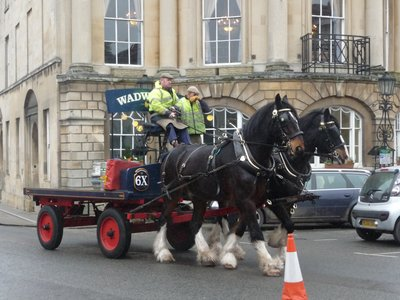 Shire Horses delivering beer from a local Brewery