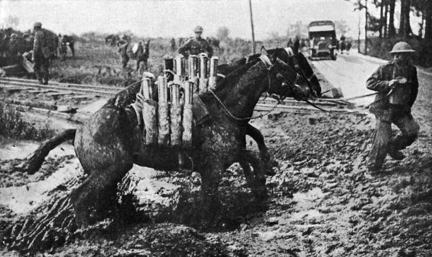 The War Horse WWl