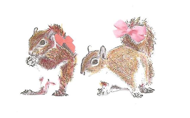 Squirrel with bows Colored