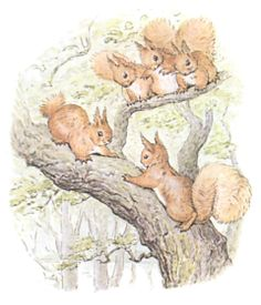 Squirrels in tree from Beatrice Potter. Nutkin.
