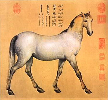 Horse_Chaoni'er