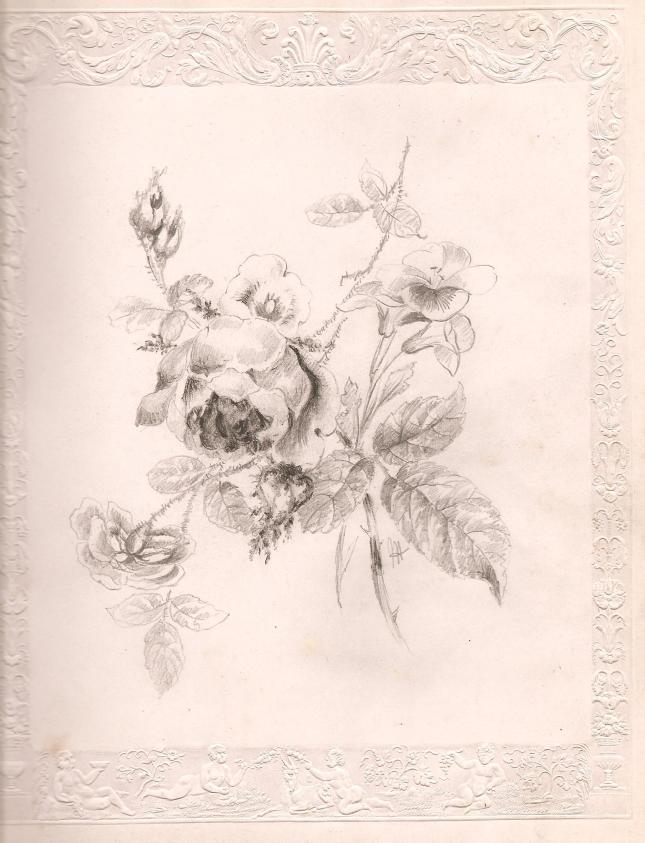 Roberts Flowers (1)