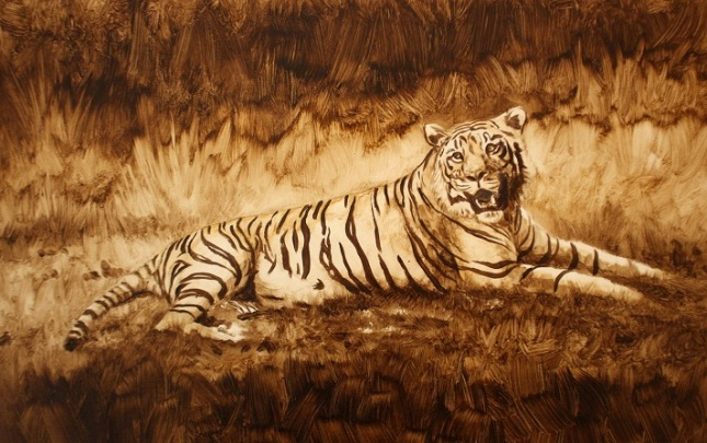 Ben Waddams sketch of Bengal Tiger. (Tiger in the sun.)