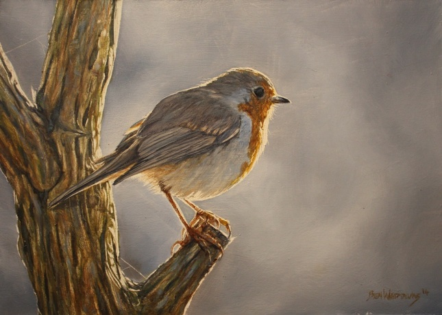 Robin painting by Ben Waddams