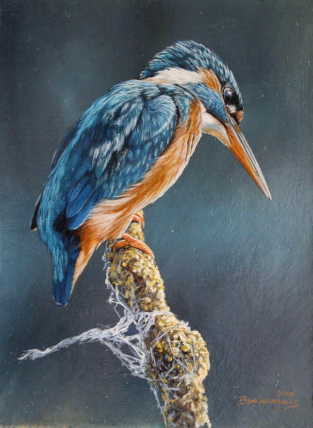 Ben Waddams painting of the Kingfisher