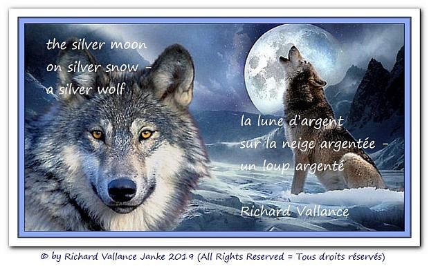 silver moon haiku 620
